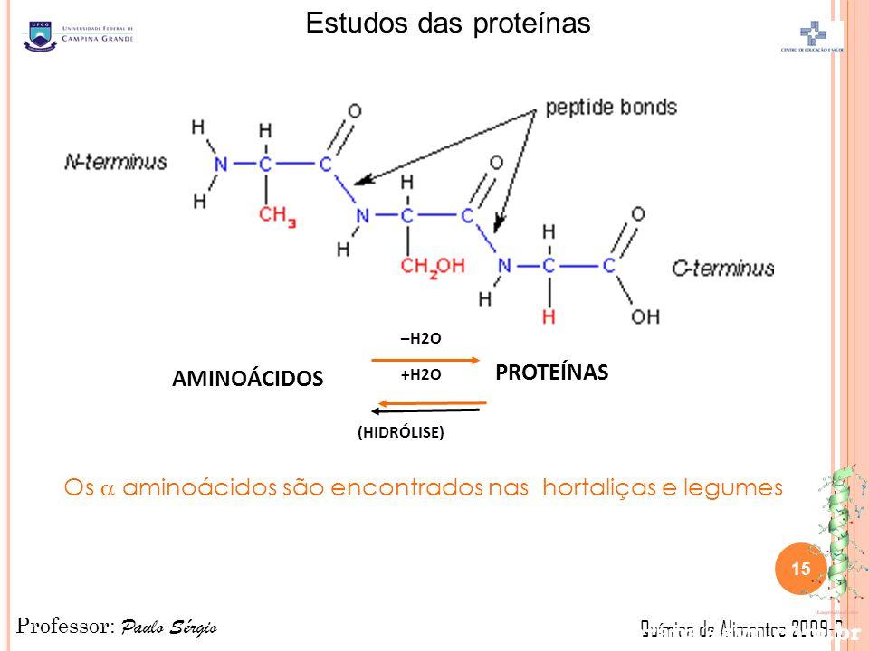 Os  aminoácidos são encontrados nas hortaliças e legumes