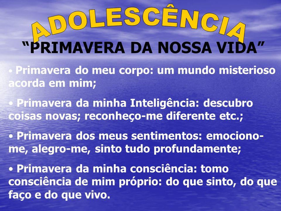 PRIMAVERA DA NOSSA VIDA