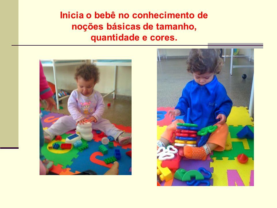Inicia o bebê no conhecimento de noções básicas de tamanho, quantidade e cores.