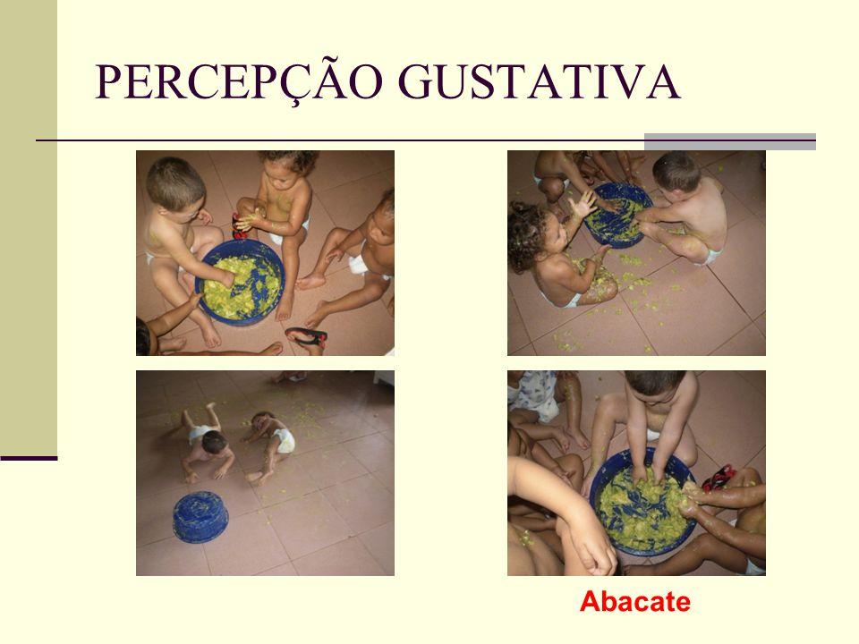 PERCEPÇÃO GUSTATIVA Abacate