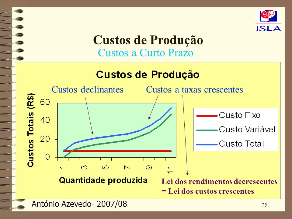 Custos de Produção Custos a Curto Prazo Custos declinantes