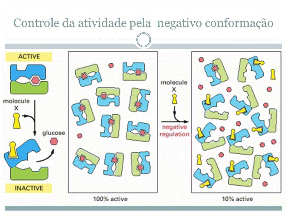 Controle da atividade pela negativo conformação