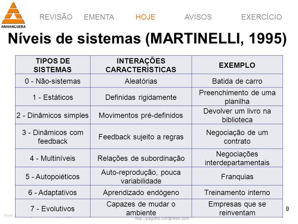 Níveis de sistemas (MARTINELLI, 1995)