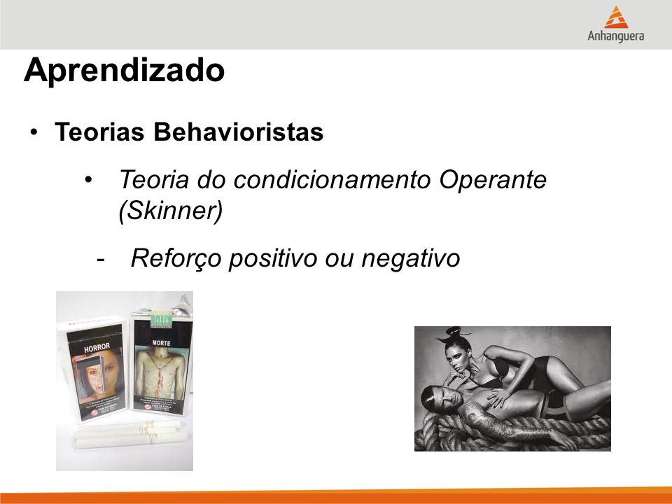 Aprendizado Teorias Behavioristas