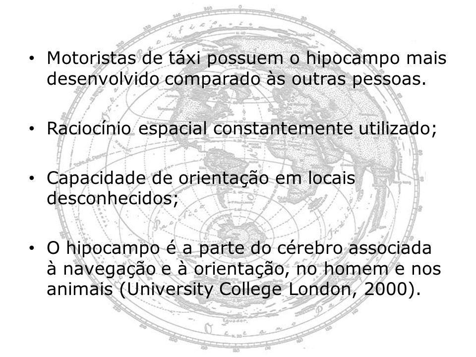 Motoristas de táxi possuem o hipocampo mais desenvolvido comparado às outras pessoas.