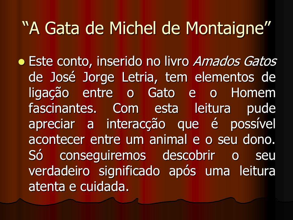 A Gata de Michel de Montaigne