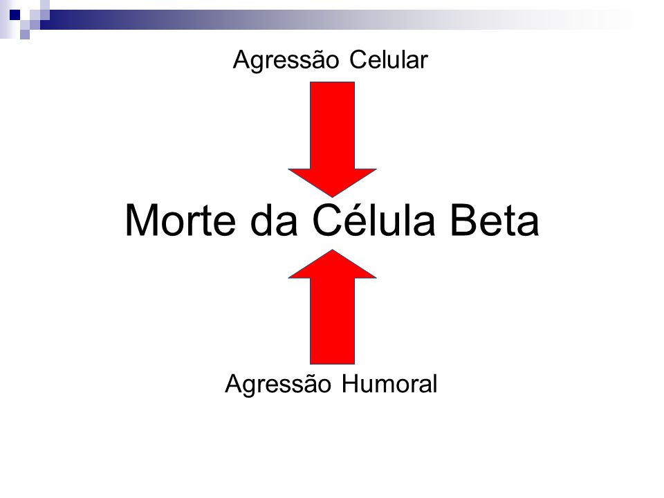 Agressão Celular Morte da Célula Beta Agressão Humoral