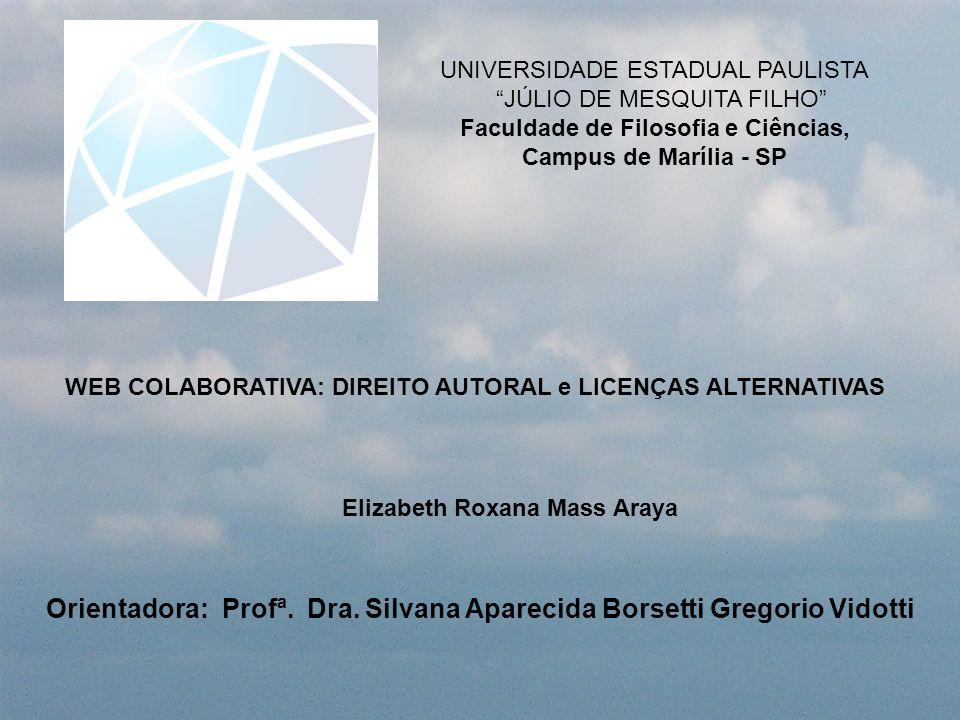 Orientadora: Profª. Dra. Silvana Aparecida Borsetti Gregorio Vidotti