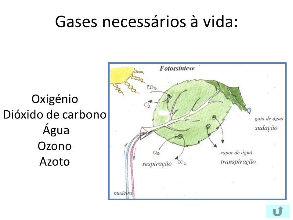 Gases necessários à vida: