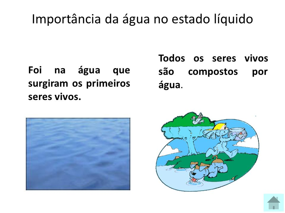 Importância da água no estado líquido