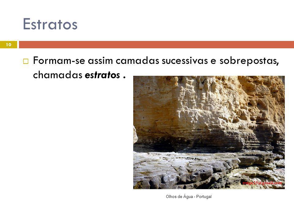 Estratos Formam-se assim camadas sucessivas e sobrepostas, chamadas estratos .
