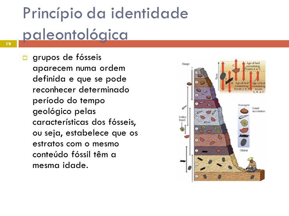 Princípio da identidade paleontológica