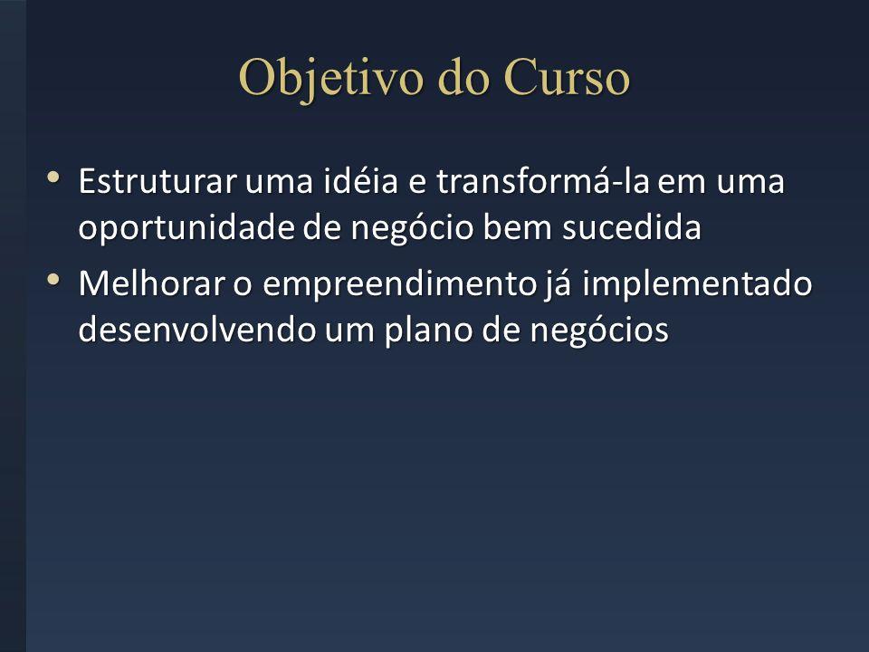 Objetivo do Curso Estruturar uma idéia e transformá-la em uma oportunidade de negócio bem sucedida.