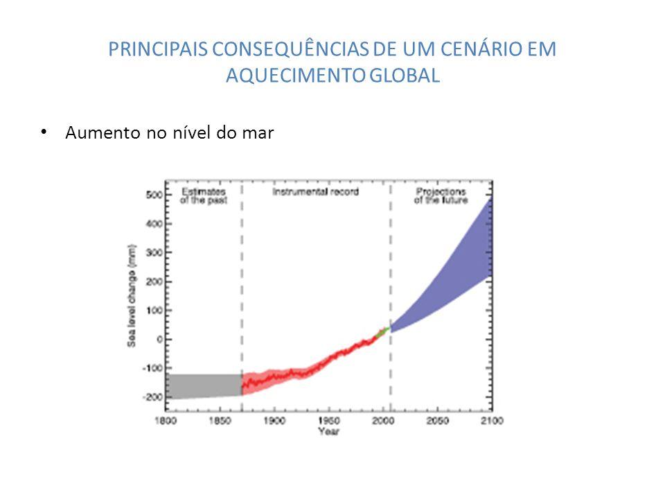 PRINCIPAIS CONSEQUÊNCIAS DE UM CENÁRIO EM AQUECIMENTO GLOBAL