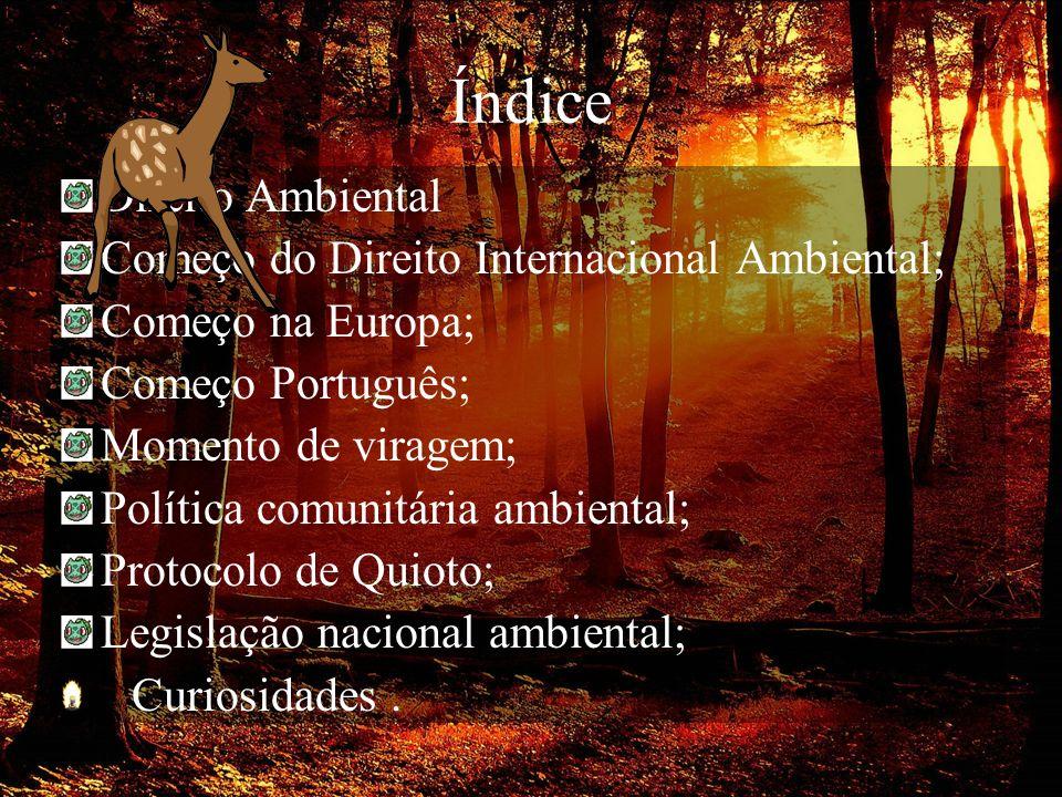 Índice Direito Ambiental Começo do Direito Internacional Ambiental;