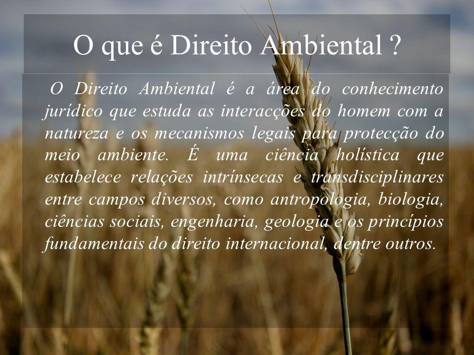 O que é Direito Ambiental
