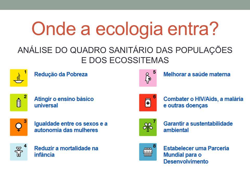 Onde a ecologia entra