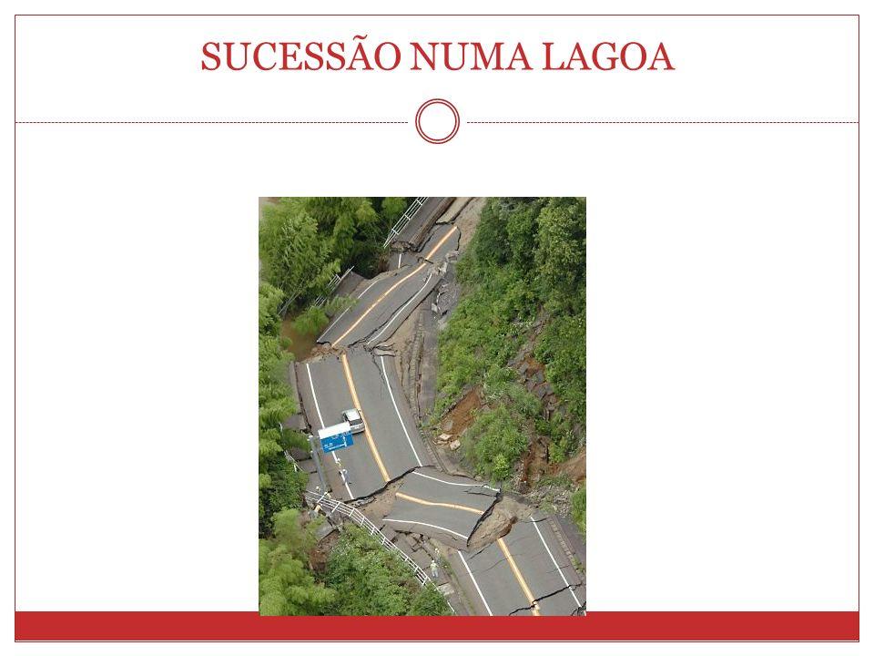 SUCESSÃO NUMA LAGOA