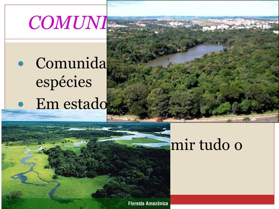 COMUNIDADES CLIMÁX Comunidade com muitas espécies