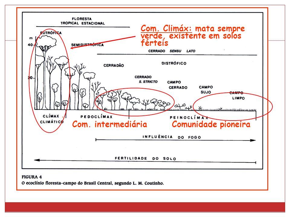 Com. Climáx: mata sempre verde, existente em solos férteis