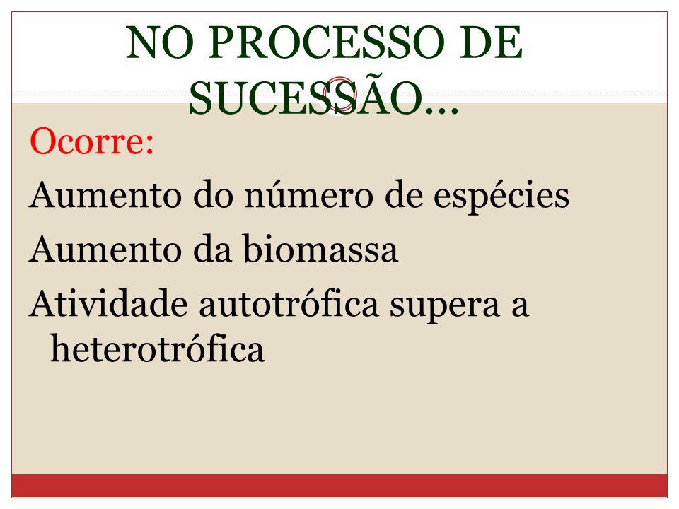 NO PROCESSO DE SUCESSÃO...