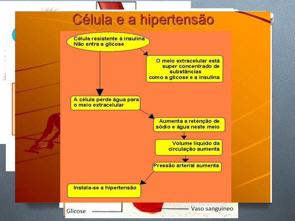 Células adiposas: hipertensão e diabetes