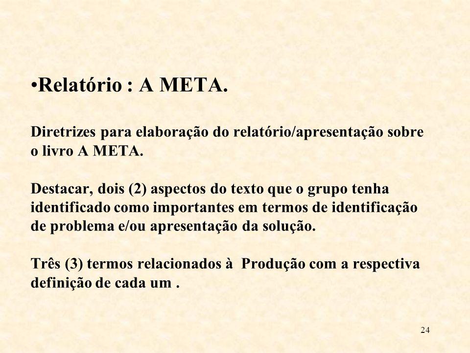 Relatório : A META. Diretrizes para elaboração do relatório/apresentação sobre o livro A META.