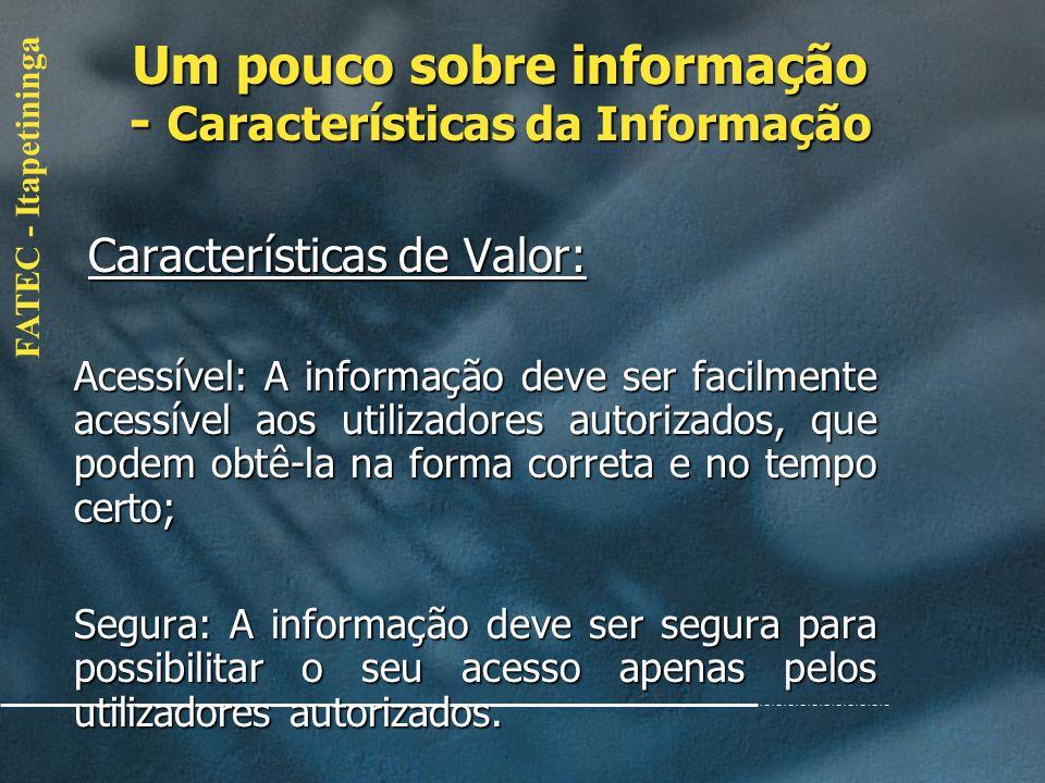 Um pouco sobre informação - Características da Informação