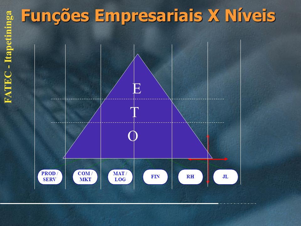 Funções Empresariais X Níveis