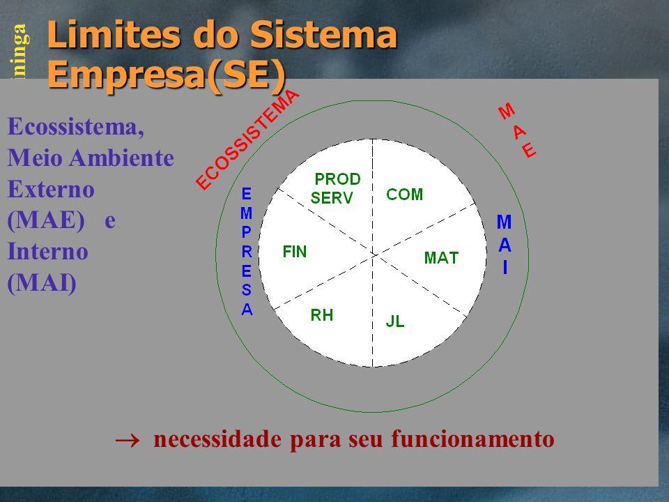 Limites do Sistema Empresa(SE)
