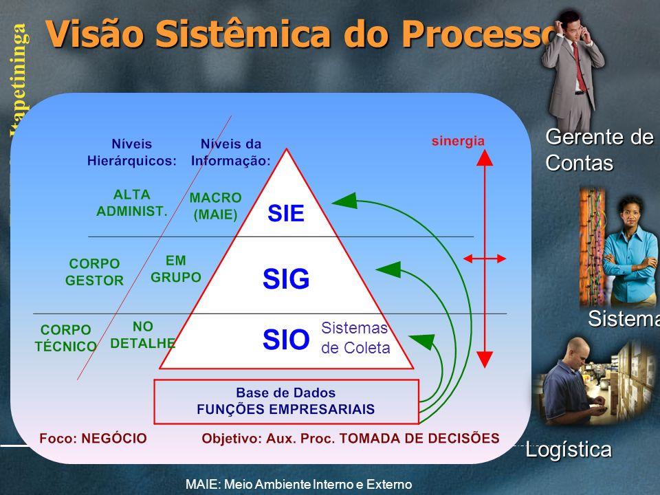 Visão Sistêmica do Processo