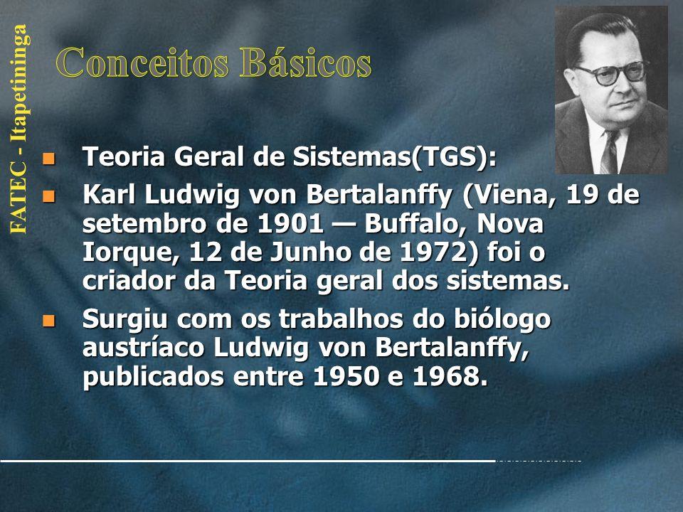 Conceitos Básicos Teoria Geral de Sistemas(TGS):