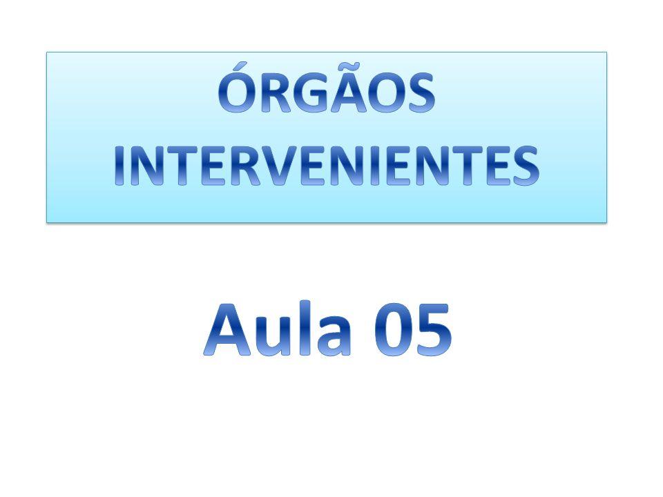ÓRGÃOS INTERVENIENTES