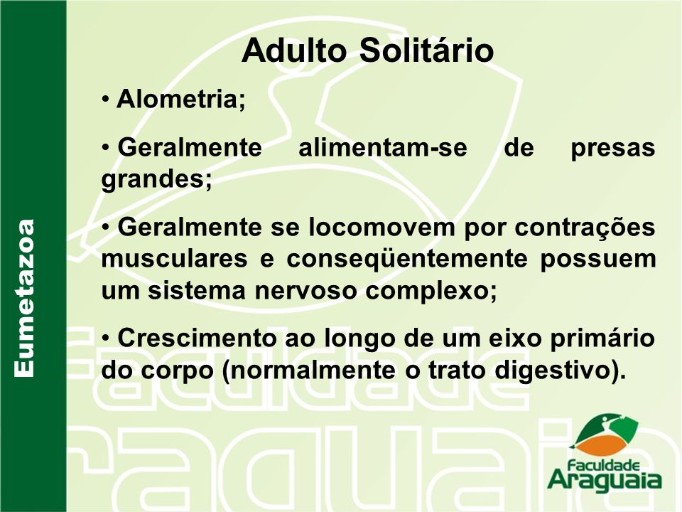 Adulto Solitário Alometria; Geralmente alimentam-se de presas grandes;