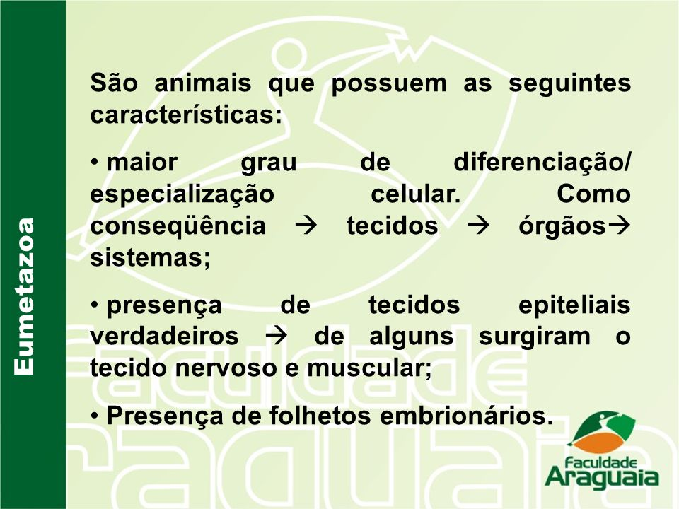 São animais que possuem as seguintes características: