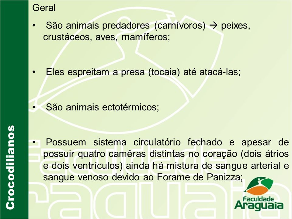 GeralSão animais predadores (carnívoros)  peixes, crustáceos, aves, mamíferos; Eles espreitam a presa (tocaia) até atacá-las;