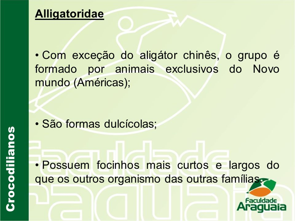 Alligatoridae Com exceção do aligátor chinês, o grupo é formado por animais exclusivos do Novo mundo (Américas);