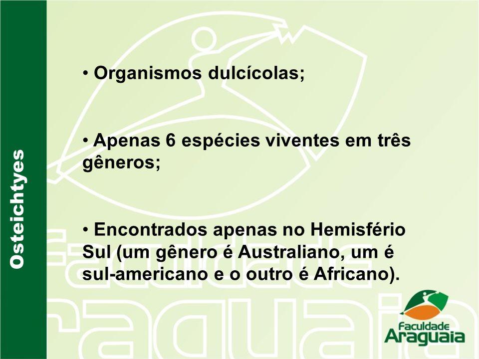 Organismos dulcícolas;