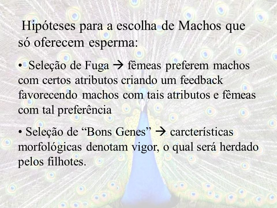 Hipóteses para a escolha de Machos que só oferecem esperma: