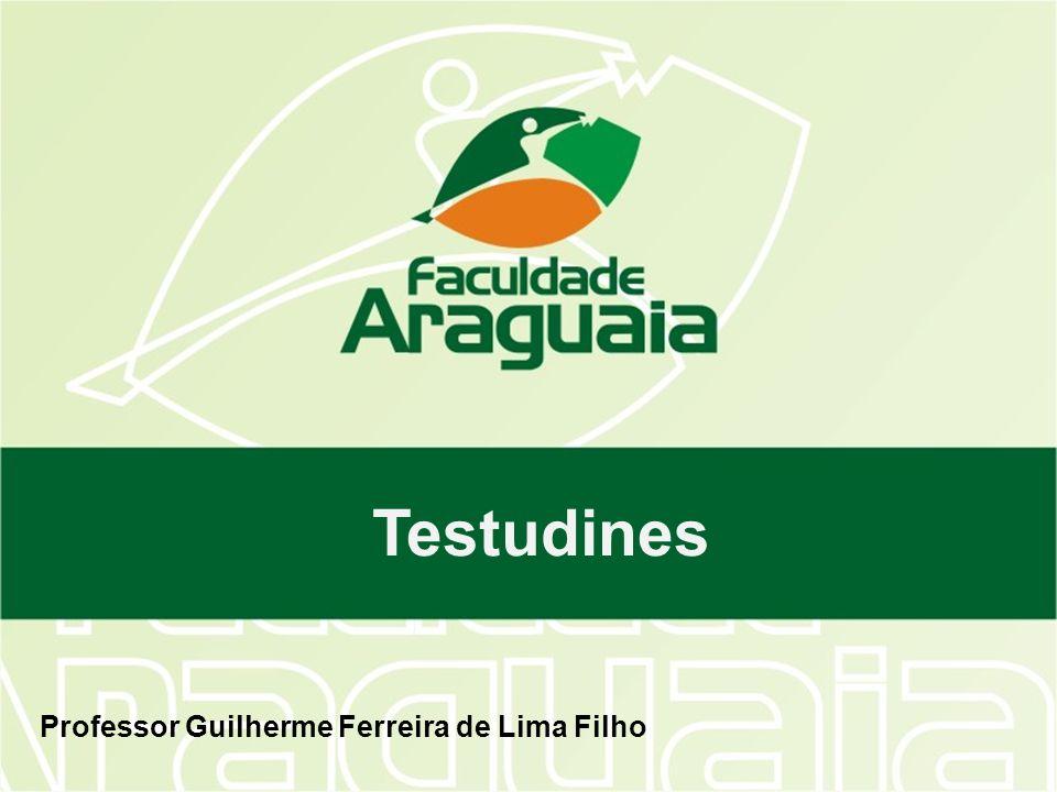 Testudines Professor Guilherme Ferreira de Lima Filho