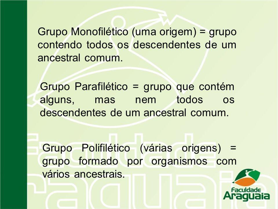 Grupo Monofilético (uma origem) = grupo contendo todos os descendentes de um ancestral comum.
