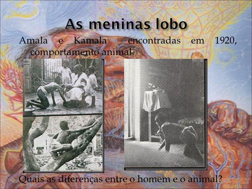 As meninas lobo Amala e Kamala encontradas em 1920, comportamento animal.