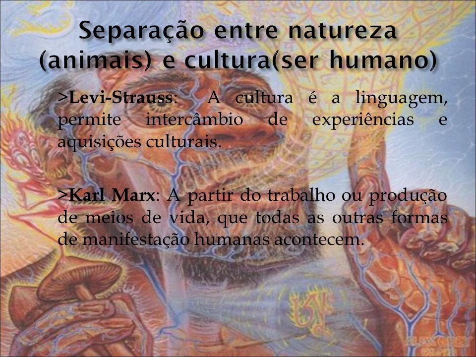 Separação entre natureza (animais) e cultura(ser humano)
