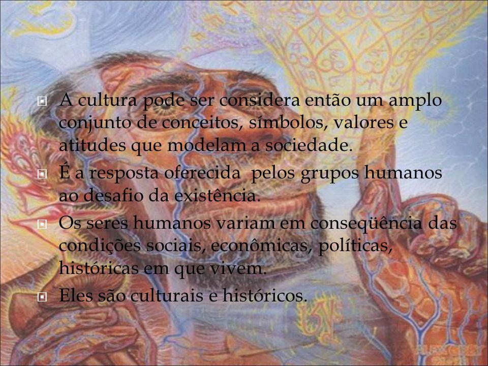 A cultura pode ser considera então um amplo conjunto de conceitos, símbolos, valores e atitudes que modelam a sociedade.