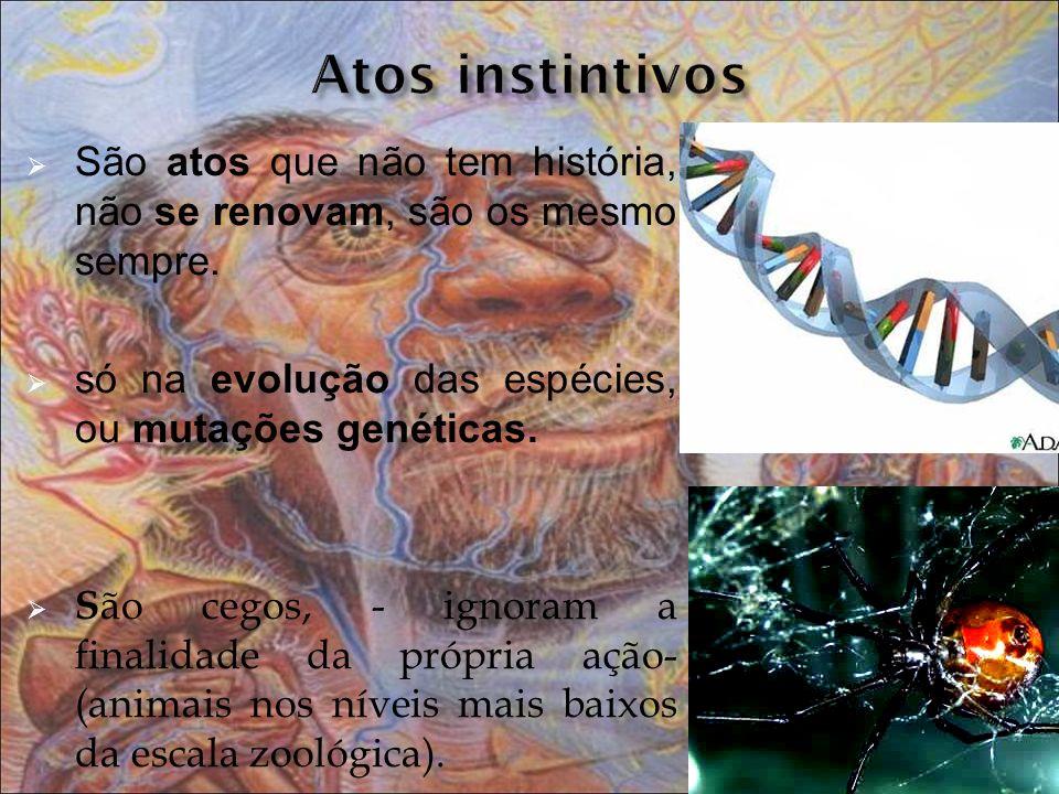 Atos instintivos São atos que não tem história, não se renovam, são os mesmo sempre. só na evolução das espécies, ou mutações genéticas.