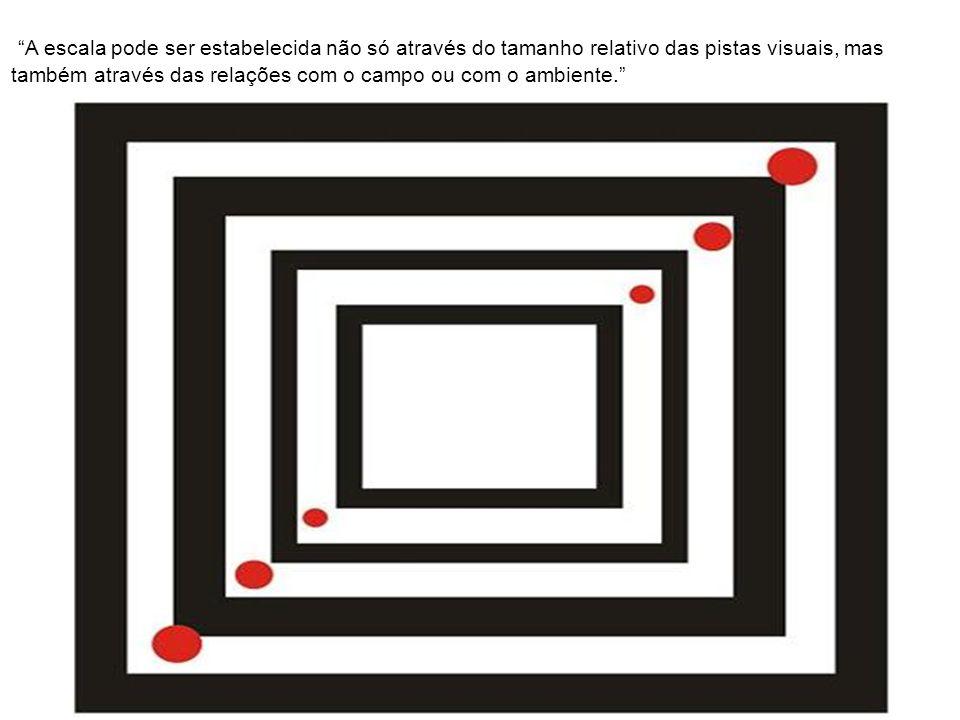A escala pode ser estabelecida não só através do tamanho relativo das pistas visuais, mas também através das relações com o campo ou com o ambiente.