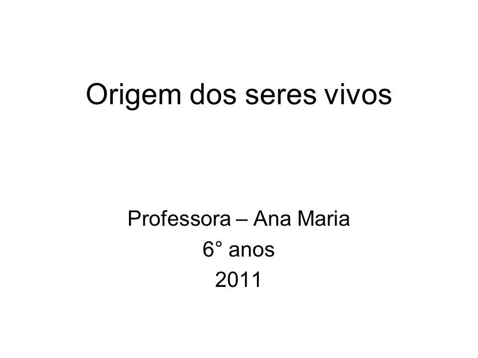 Professora – Ana Maria 6° anos 2011
