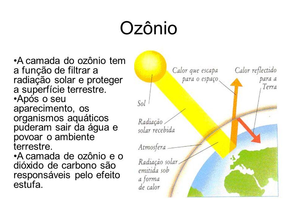 Ozônio A camada do ozônio tem a função de filtrar a radiação solar e proteger a superfície terrestre.