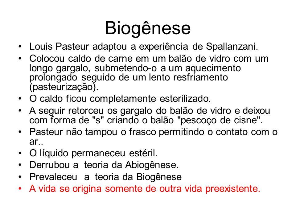 Biogênese Louis Pasteur adaptou a experiência de Spallanzani.