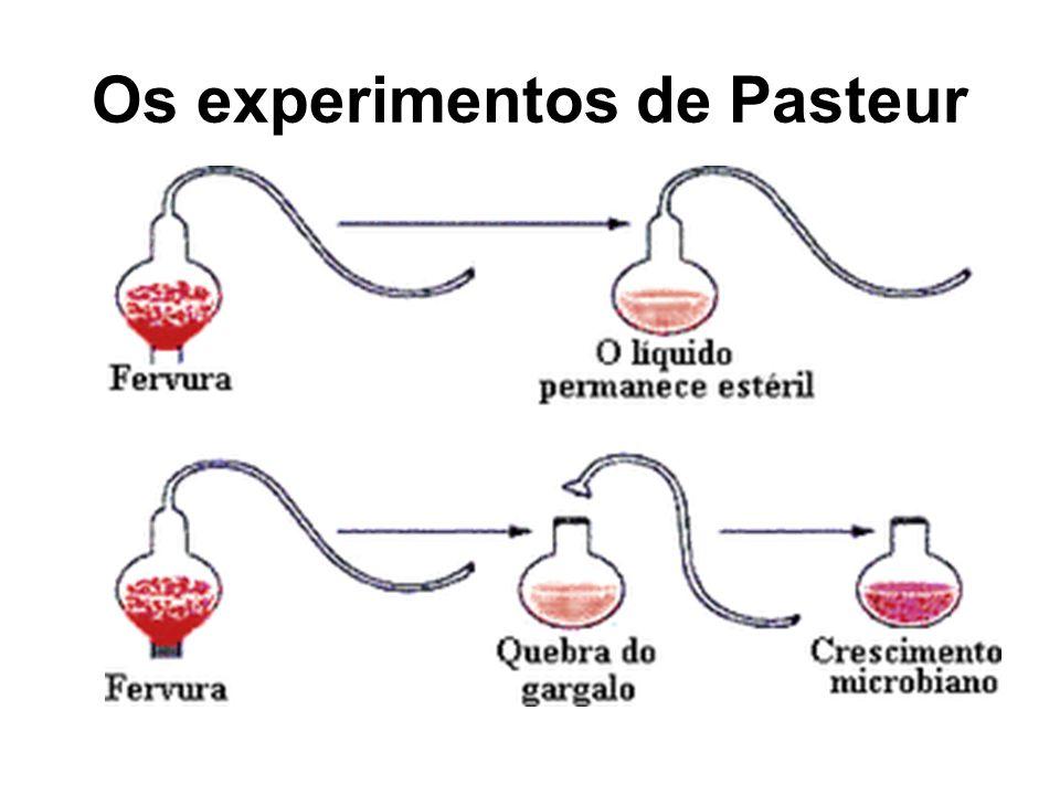 Os experimentos de Pasteur